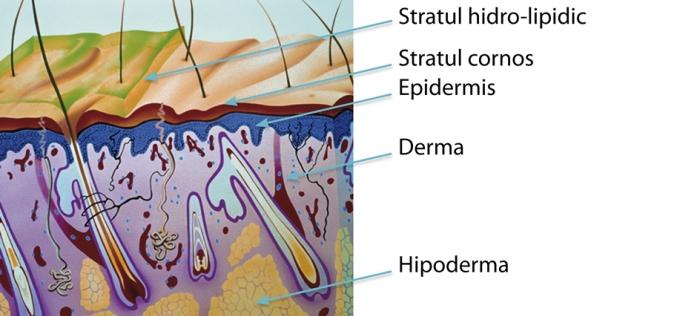 Dispozitiv de tratare a osteocondrozei